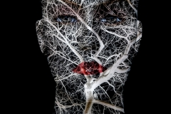 Abstract Arteries and Veins